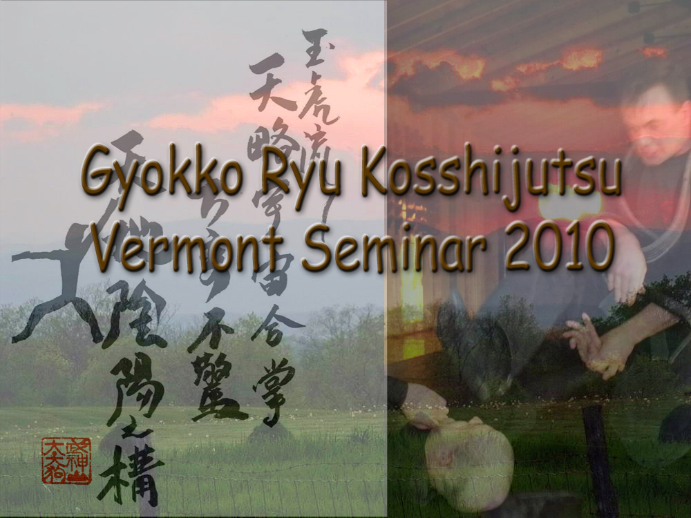 Gyokko Ryu Seminar (May 2010)
